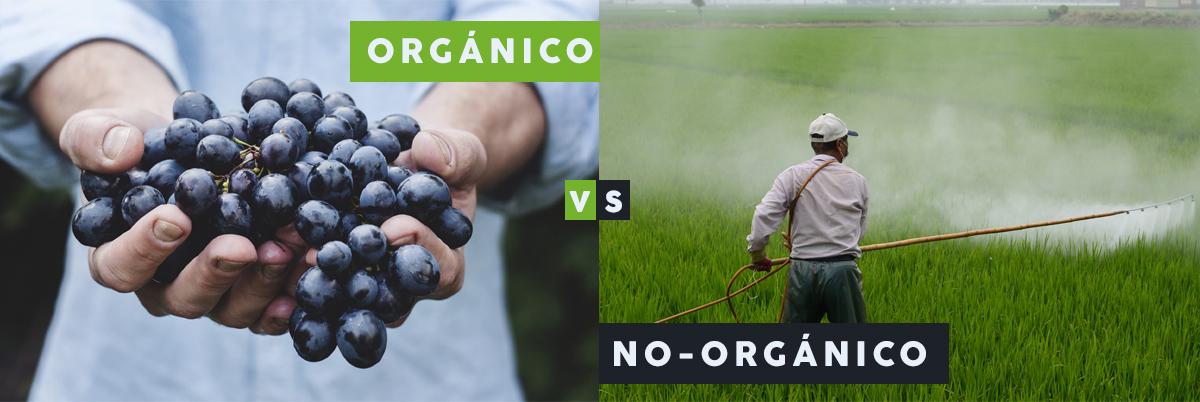 alimentos organicos vs no organicos