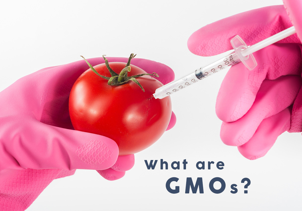 what are GMO for our health